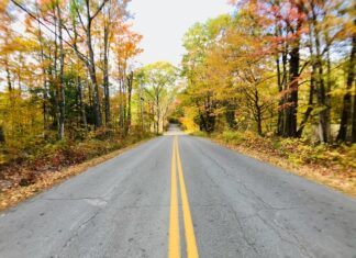 Do you need car insurance in New Hampshire?